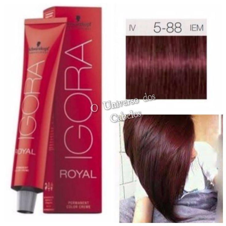 As cores de cabelo do momento, Vermelho Vinho, Vermelho Violeta e Marsala.     Essas cores surgiram e fizeram a cabeça da mulherada, também...
