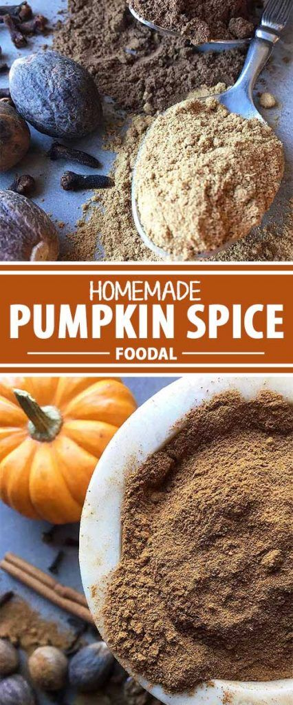 With the arrival of the colder seasons, the warming combination of pumpkin spice (cinnamon, ginger, cloves, allspice, and nutmeg) is a welcome addition to meals and drinks alike. It's great in baked goods like pies, muffins, pancakes and breads. And yes, it actually makes pumpkin taste better too! Read more about each spice, and learn how to make this easy mixture at home, on Foodal now!
