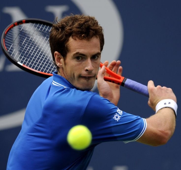 Image Detail for - Andy Murray Profile and Images 2012.. | The Sports Stars