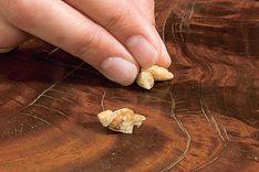 Kratzer im Holz kannst du sogar mit Walnüssen kaschieren. #Tipp #heimwerken #Holz