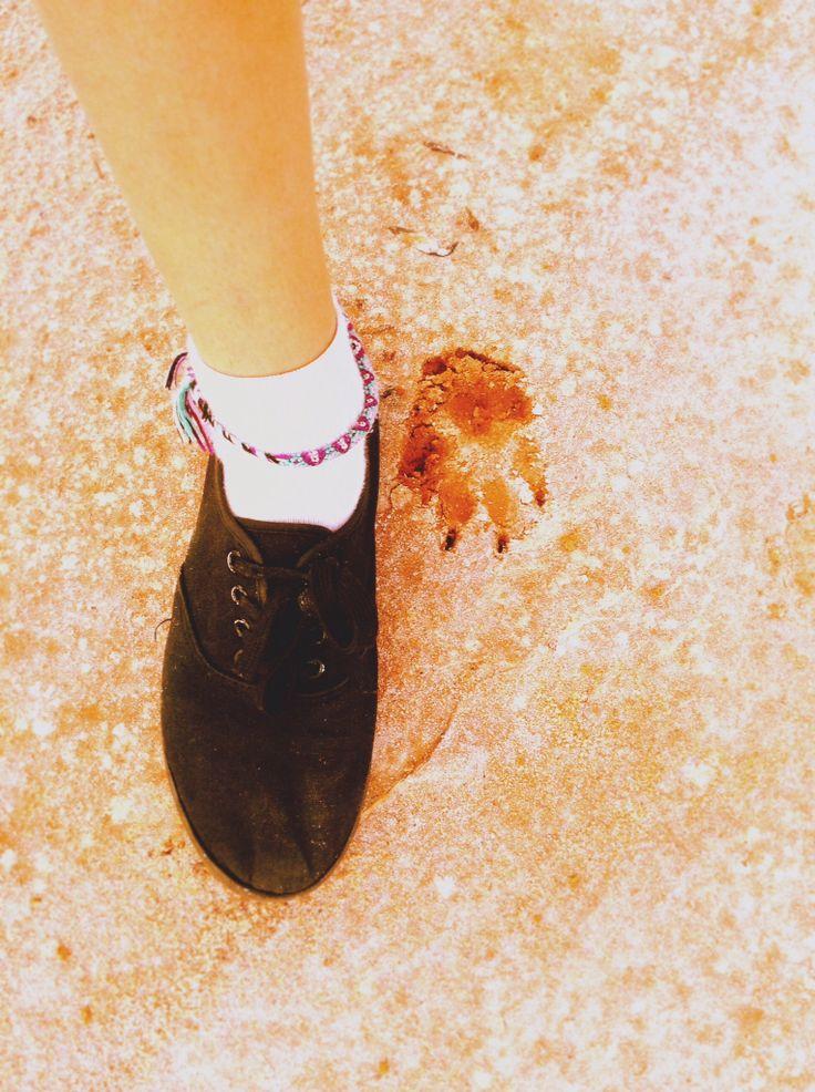 My foot next to a dingos foot print