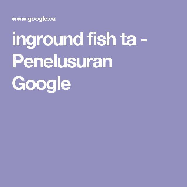 inground fish ta - Penelusuran Google