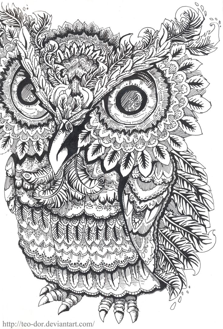 Zen colouring advanced art therapy collector edition - Owl Coloring Pages Colouring Adult Detailed Advanced Printable Kleuren Voor