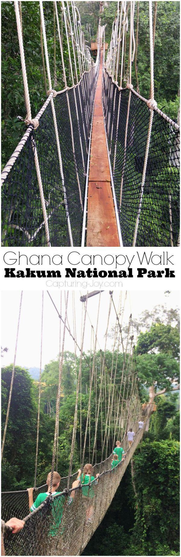 Ghana Canopy Walk Kakum National Park!  Traveling tips for visiting Ghana with your family.