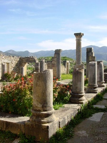 #volubilis roman's ruins, 1H30 drive from #rabat