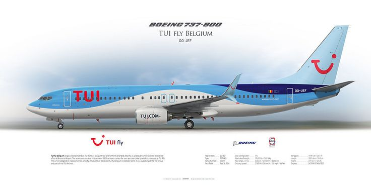 Boeing 737-800 Tui fly Belgium OO-JEF | Airliner Profile Art Prints | www.aviaposter.com | #airliners #aviation #jetliner #airplane #pilot #aviationlovers #avgeek #jet #sideplane #jetairfly #tui #tuifly #boeing #b737
