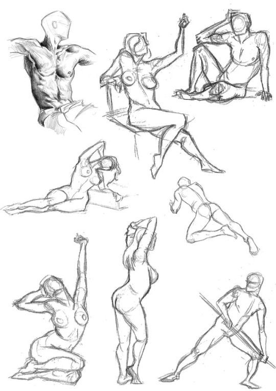 Monkey's Head anatomy, poses, gesture, reference, art