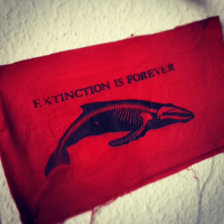 Extinction is forever patch