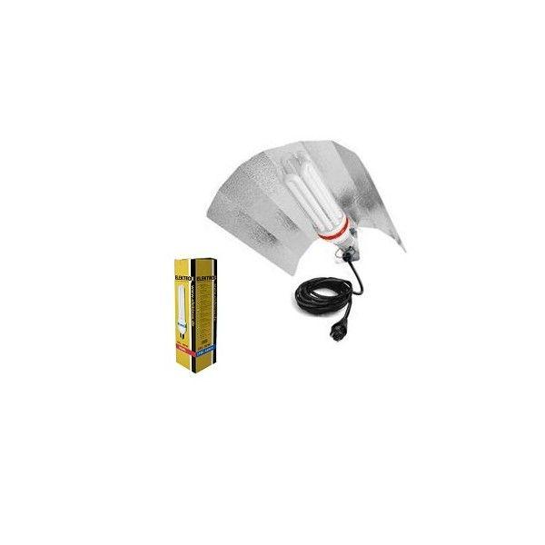 CFL / Low Energy Kit 85W Dual - 2700/6500k.