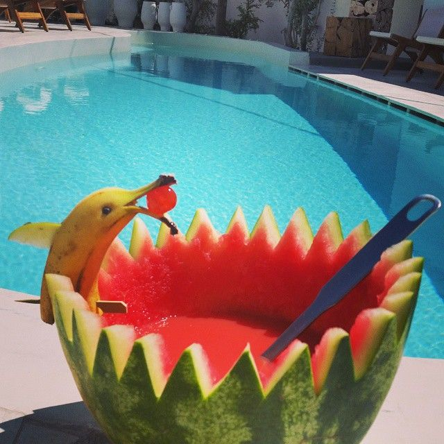 Look! There's a dolphin in our ‪#‎pool‬! How about joining us this ‪#‎weekend‬ for some fresh & fruity cocktails by the pool of Cavo Bianco Resort?