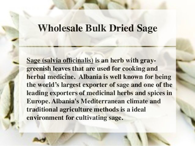 Wholesale Bulk Dried Sage  Sage (salvia officinalis) is an herb with gray-greenish  leaves that are used for cooking and  ...
