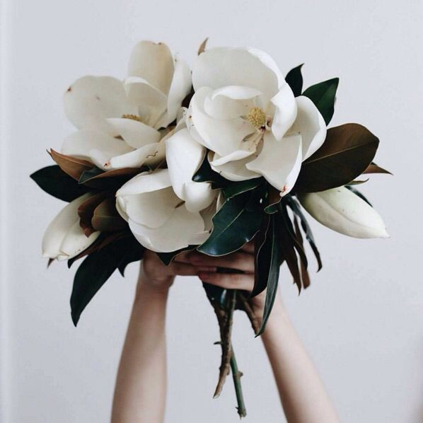 Beautiful and simple magnolia bouquet
