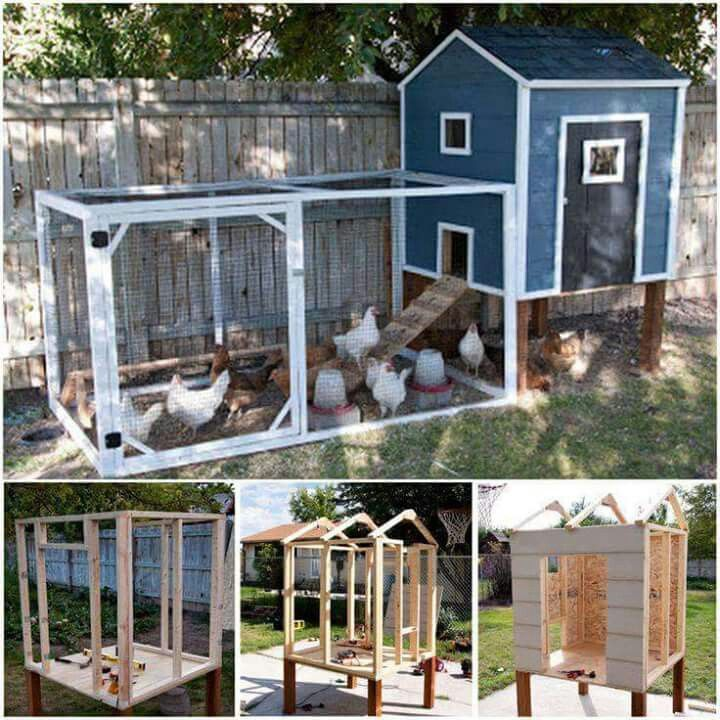 Small chicken coop and run like that it is up off the for Small chicken house plans