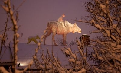 Another winter picture. Moose on the roof with rider and calf. First snow in October.