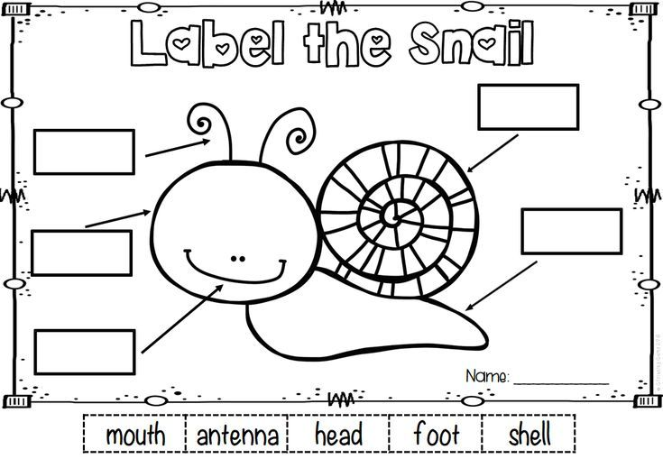 Spring Labeling Freebie Color And Black Lined Snail Included Spring Literacy Activities Spring Literacy Literacy Activities Free kindergarten labeling worksheets