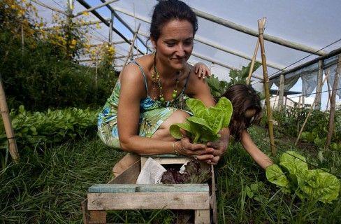agricoltura-biodinamica-4