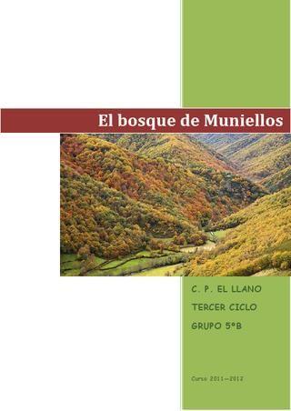 El bosque de Muniellos