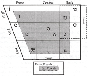 how to learn ipa vowels