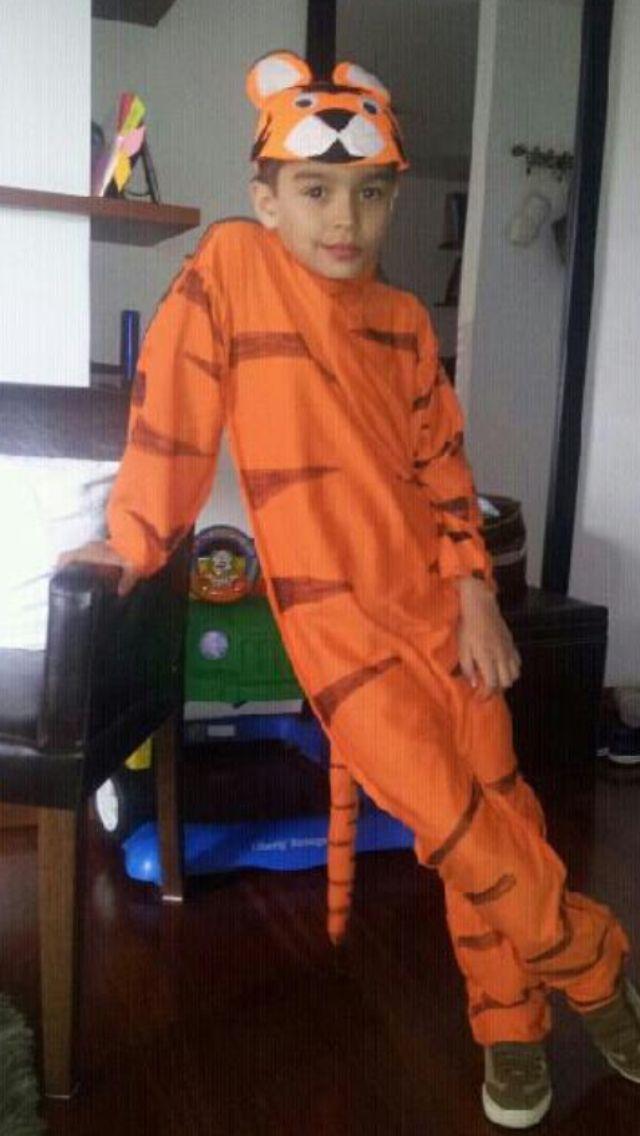Tiger costume.