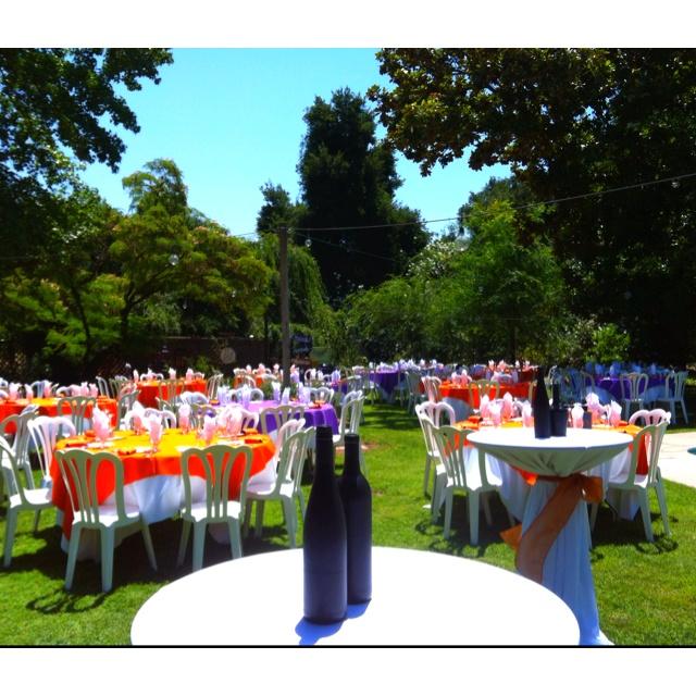 Purple Orange Wedding Ideas: Orange And Purple Backyard Wedding Reception!