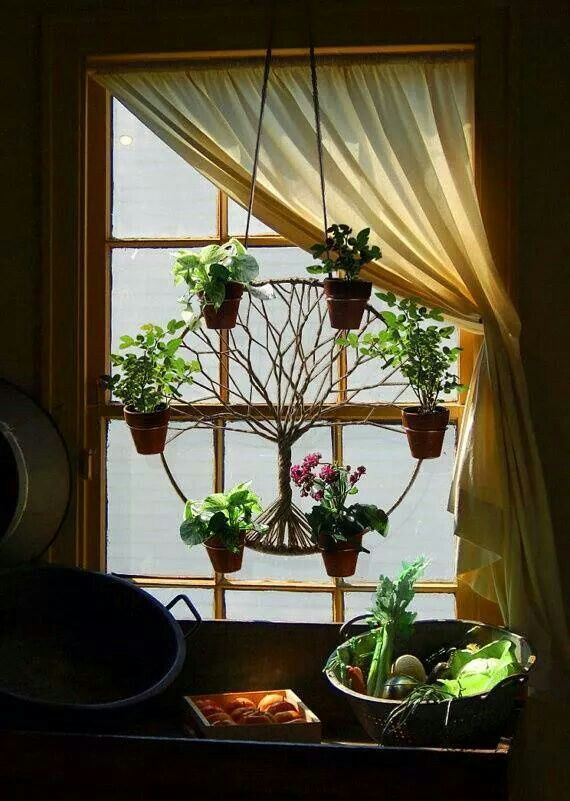 Love the concept of hanging greenery in the awkward window