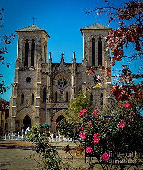 San Fernando Cathedral by Charlene Gauld