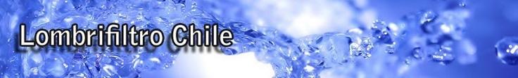 """""""LOMBRIFILTRO CHILE INGENIERIA AMBIENTAL LTDA. es una empresa creada con autorización de la Fundación para la Transferencia Tecnológica de la Universidad de Chile, para la Difusión, Comercialización y Desarrollo de proyectos que utilizan el Sistema de Tratamiento de Aguas Residuales Domésticas o Aguas Servidas y Residuos Industriales Líquidos Orgánicos denominado Sistema Tohá® o Lombrifiltro."""""""