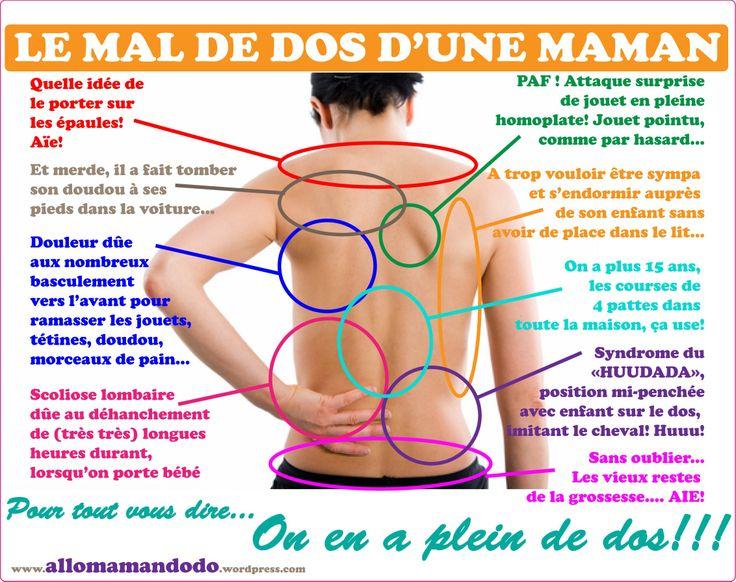 Les muscles pliant lépine dorsale dans le service de poitrine