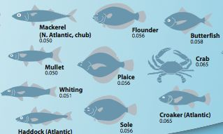 26 best let 39 s jump together images on pinterest hunting for Pregnancy fish chart