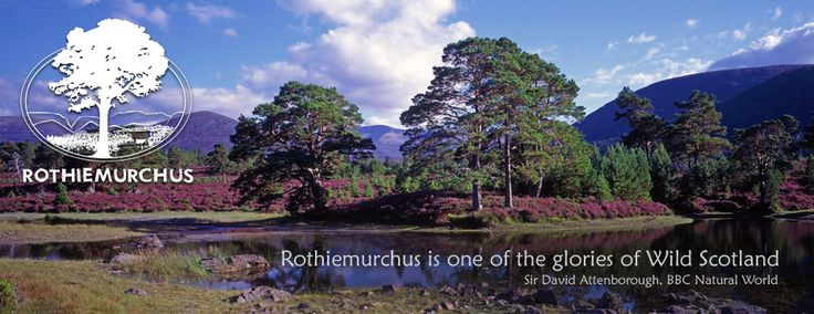 Rothiemurchus, Aviemore, Scotland for Walking, Outdoor Activities, Camping and Shopping