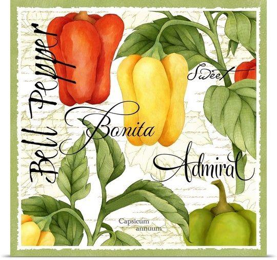 Botanical Bell Pepper