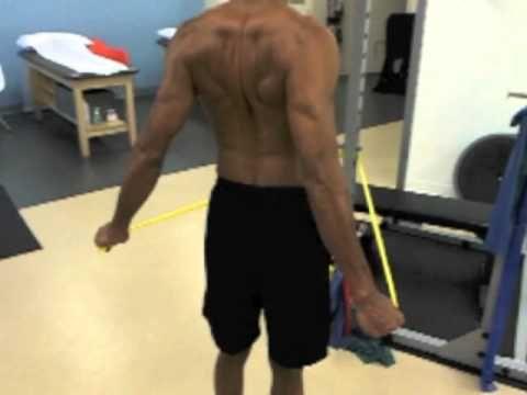 1000 images about rehabilitación de hombro on pinterest