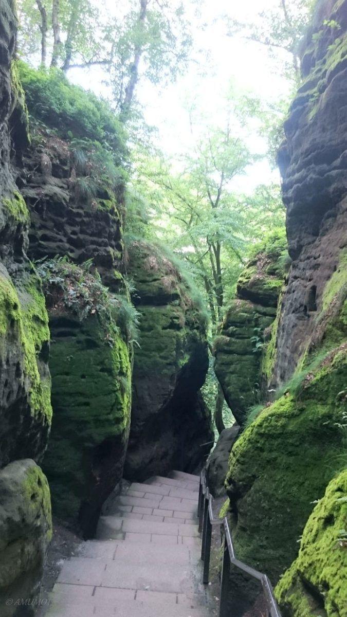 Wandern im Elbsandstein Gebirge – Wohnmobil Reisebericht Sächsische Schweiz