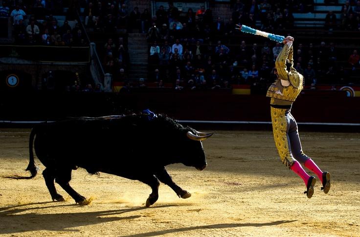 Las Fallas Festival - Valencia #ElMatador