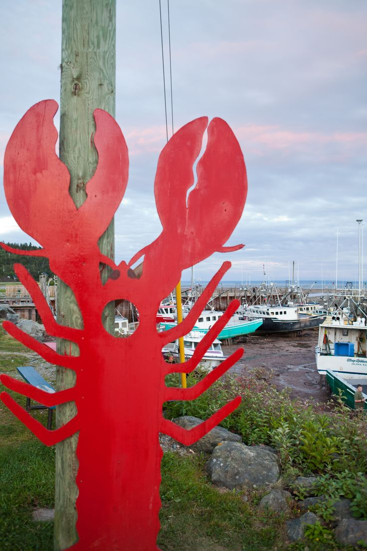 Watch local lobster fishing boats bring in the day's catch to the Alma wharf on the Bay of Fundy, then enjoy the freshest lobster dinner you've ever had at a nearby restaurant. #ExploreNB