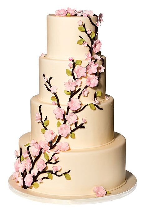 The Fairies Cake Dan Artinya : 1000+ ide tentang Cherry Blossom Cake di Pinterest Kue ...