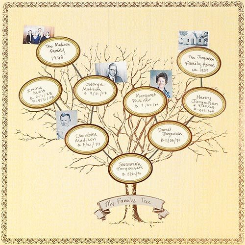 Best 20+ Family tree layout ideas on Pinterest | Family tree ...