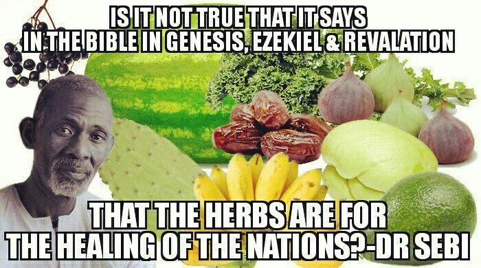 Dr. Sebi reference Scripture on food