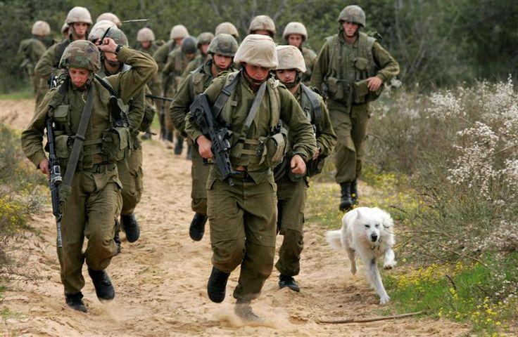 Israeli Defense Force Soldiers: Israeli Culture, Drafting Dodgers, Force Soldiers, Israeli Army, Defends Force, Israeli Defen, Israeli Military, Army Prove, Chee Khabar
