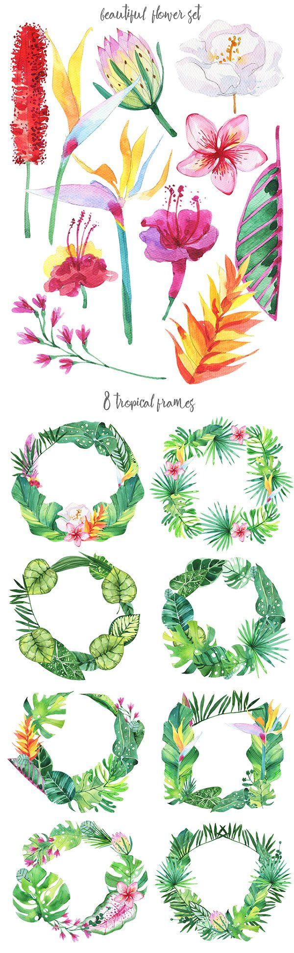 Tropical Paradise watercolor set by Kat_Branch on @creativemarket