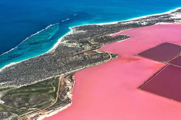 Western Australia is home to a number of extraordinary 'pink lakes'.This particular bubblegum-pink wonder of nature is the Hutt Lagoon at Port Gregory.