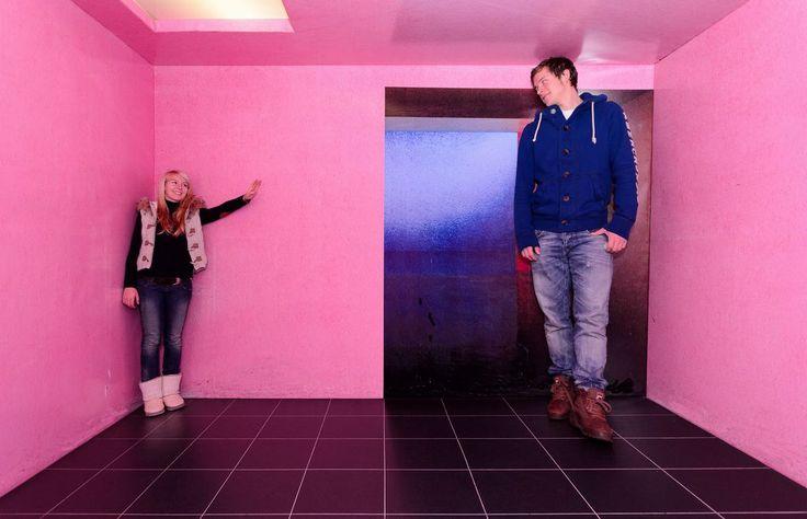 """""""Villa Sinnenreich"""": Vom Herrenhaus zum offenen Museum - In der Villa Sinnenreich im Poeschl-Park werden die Sinnesorgane auf die Probe gestellt. Mehr dazu hier: http://www.nachrichten.at/oberoesterreich/muehlviertel/Villa-Sinnenreich-Vom-Herrenhaus-zum-offenen-Museum;art69,1466168 (Bild: Villa Sinnenreich)"""