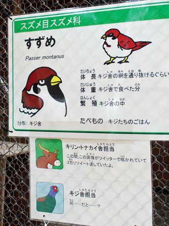 スズメの「悪意ある」解説板、話題に 秋田市大森山動物園 /秋田(みんなの経済新聞ネットワーク) - Yahoo!ニュース