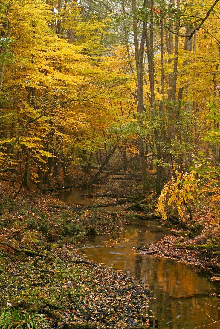 Barnim Nature Park – a landscape that lives in the memory ©Frank Liebke