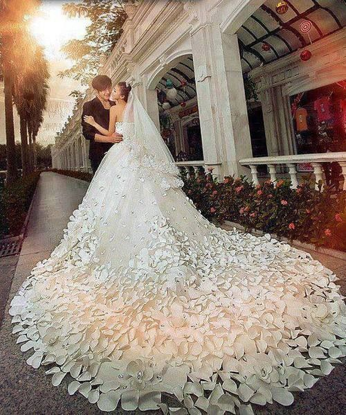 Most Beautiful Ball Gown Wedding Dresses: Wedding Dress Long Train
