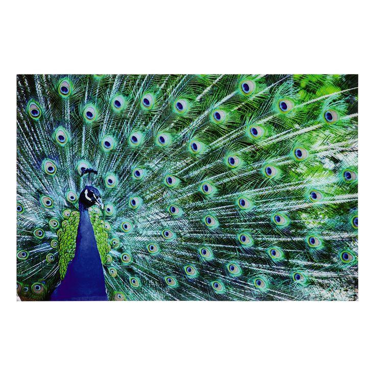 tableau paon en plexi 80 x 120 cm sao jo maisons du monde - Chambre Jungle Fly