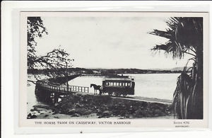 horse drawn tram, the causeway, victor harbor