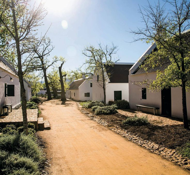 The Cape Dutch cottages that serve as guesthouses at Babylonstoren, a farm in the South African Winelands outside of Cape Town. Photo by David Crookes.
