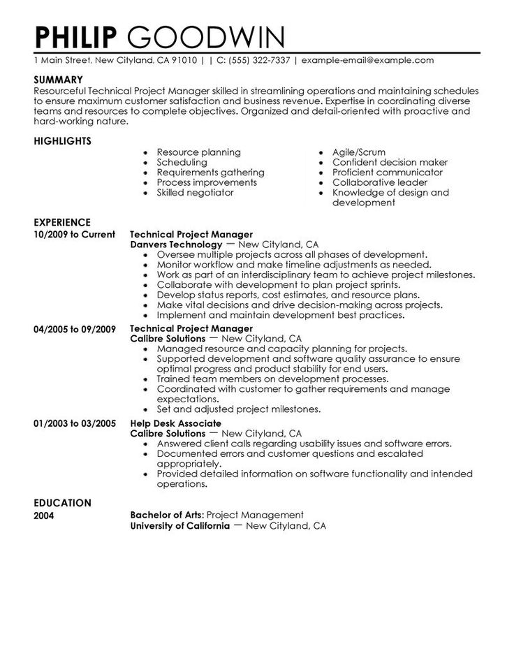 technical project manager resume example