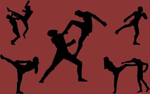 Muay Thai Brasil MMA